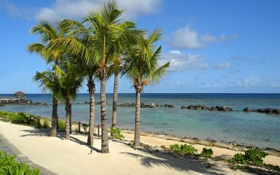L'île Maurice en été : Tout savoir sur les récifs et les plages de corail