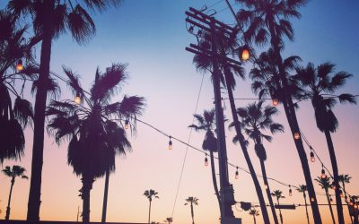 Carnet de voyage : la Californie