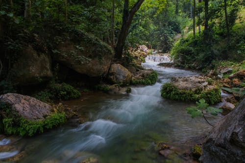 Partir à la découverte des réserves naturelles de France, les règles à suivre